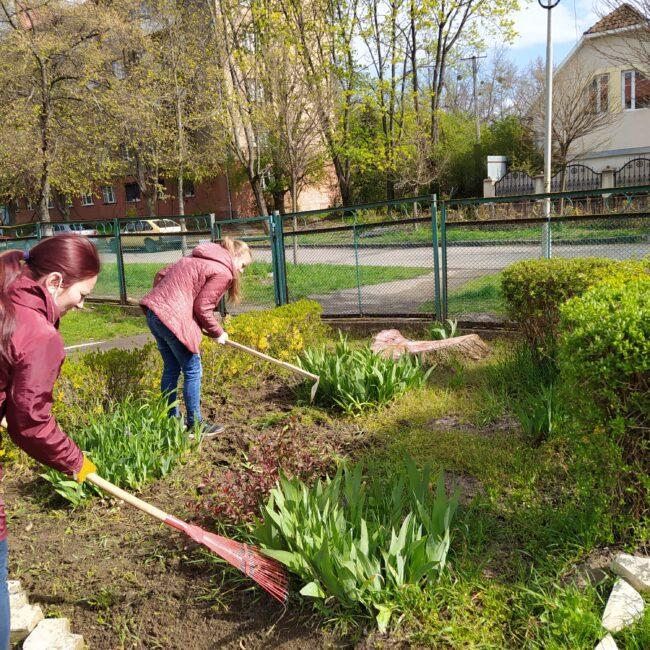 Озеленення та благоустрій території ЗДО - Головна